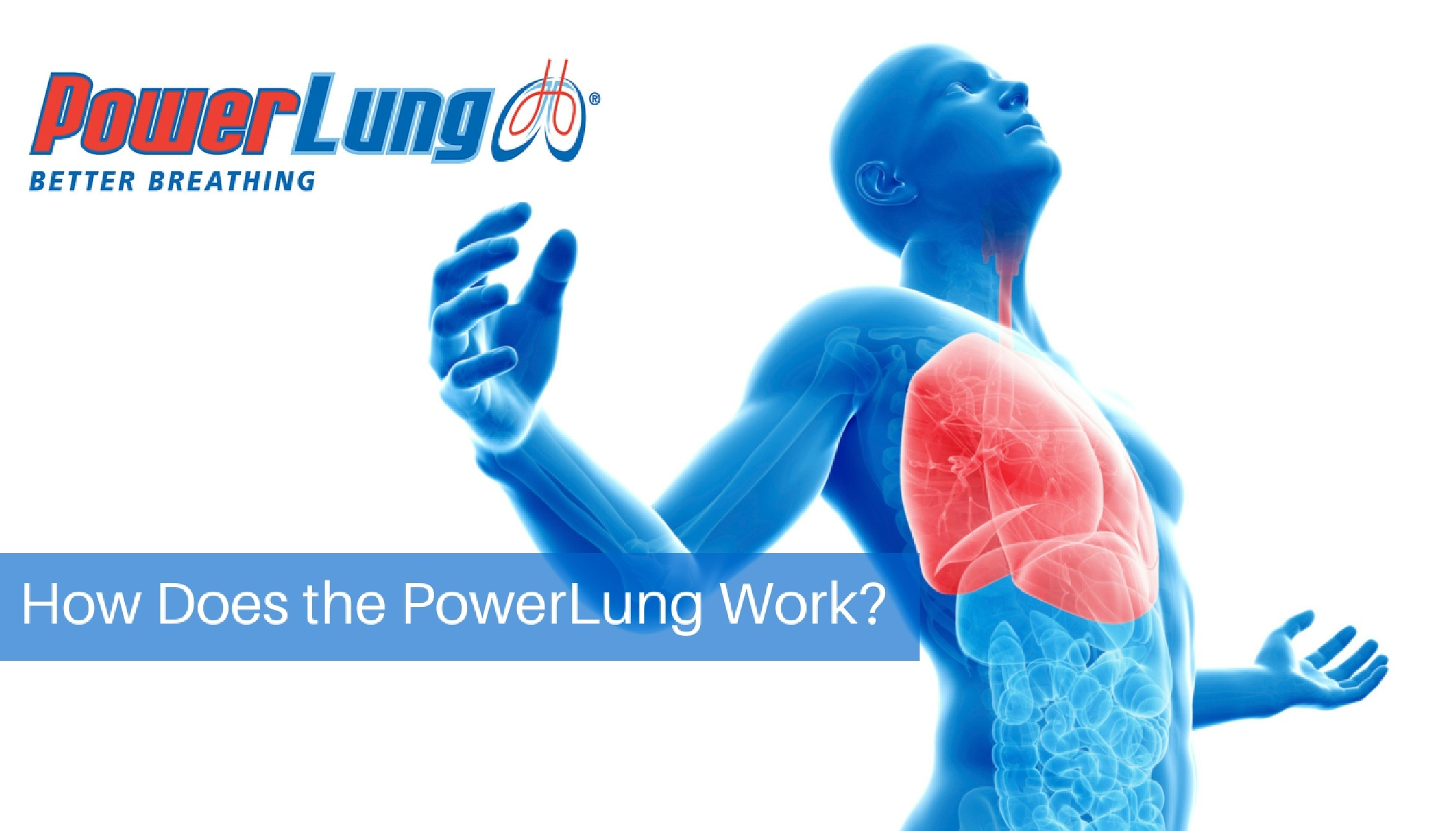 PowerLung - How Does the PowerLung Work-.jpg