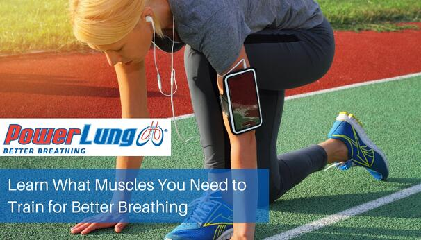 PowerLung - Learn What Muscles You Need to Train for Better Breathing.jpg